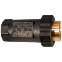 """34UFX34F-705 - 3/4"""" Dual Check Valve with Female NPT threaded union inlet connection"""