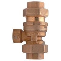 Dual Check Valve Assembly with Intermediate Atmospheric Vent