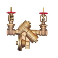 Reduced Pressure Principle Assembly with OS&Y Gate Valves