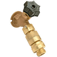 Wall Faucet with Backflow Preventer