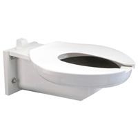 Extra Heavy Duty Bariatric Toilet