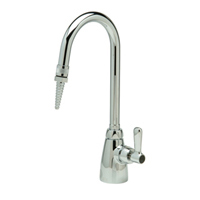 "Z825B1-6F -AquaSpec® single-control lab faucet with 5-3/8"" gooseneck, serrated nozel outlet and lever handle"